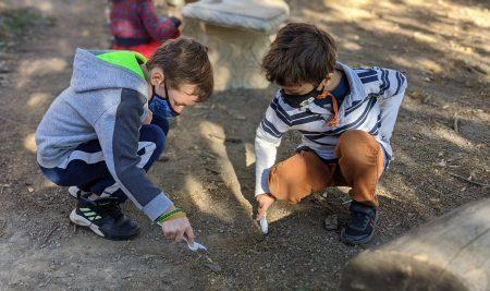 Stella Niagara shines with Outdoor Education